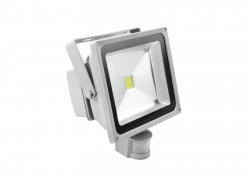 EUROLITE LED IP FL-30 COB 6400K 120° BW